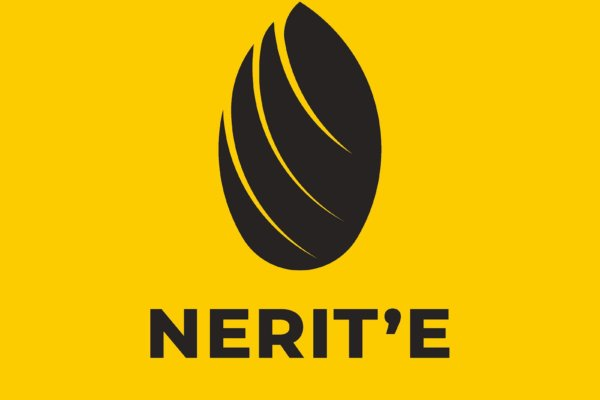 Introducing Nerit'e